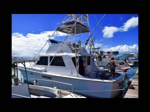 Maui Fishing Charter On Hinatea: Marlin Catch & Release