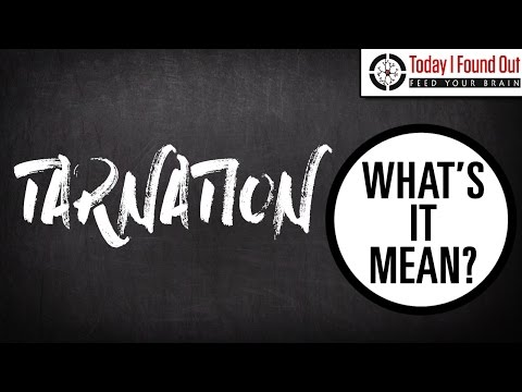 What is a Tarnation