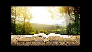 Beautiful Relaxing Music 24/7: Study Music, Sleep Music, Meditation Music, Instrumental Music