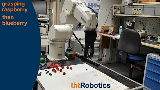 Adaptive Robotic Gripper. Grasping mixed raspberries and blueberries