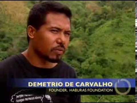 Demetrio De Carvalho: 2004 Goldman Prize winner, East Timor