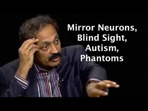 From phantom limbs to consciousness -  neuroscientist V. S. Ramachandran on Charlie Rose