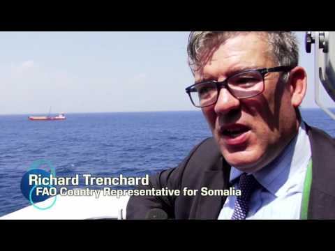 EU, FAO move to tackle maritime challenges in Somalia