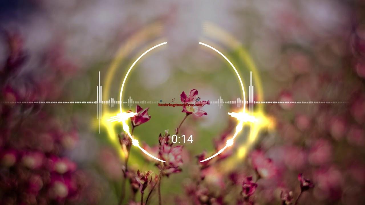 Bird sound ringtone free mp3 ringtones downloads youtube.