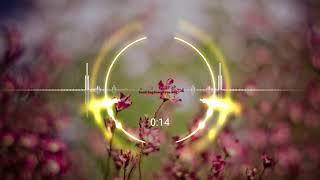 Download High Volume ringtone | Best Ringtones download Free for mobile