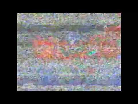 [AMV] D`masiv - Diam Tanpa Kata
