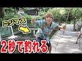 夏の定番!ニジマス釣り!釣れ過ぎ注意!ww の動画、YouTube動画。