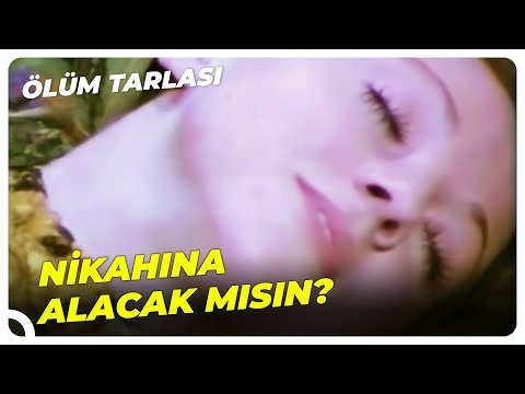 Ölüm Tarlası - Cabbar, Naciye'nin İsteklerini Karşılıyor! | Kartal Tibet Eski Türk Filmi