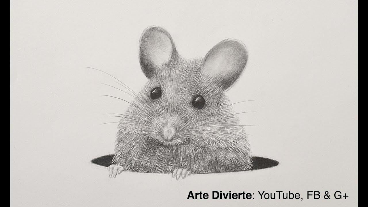 Cómo Dibujar Un Ratón A Lápiz