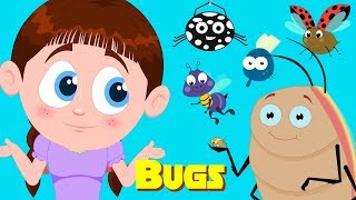 Bugs song | Schoolies Video | Song for Babies | Kindergarten Nursery Rhymes for Toddlers
