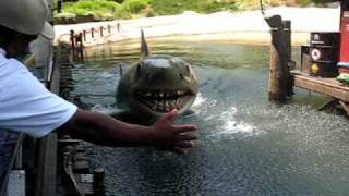 Jaws - Universal Studios Holywood