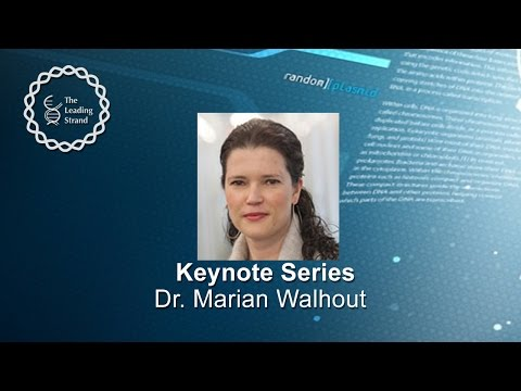 CSHL Keynote; Dr Marian Walhout, University of Massachusetts Medical School