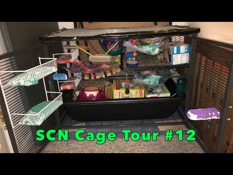 Single Critter Nation Cage Tour #12 + 'Travel' Cage Tour