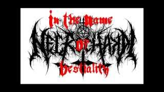 Necrochakal - In The Name Of Bestiality