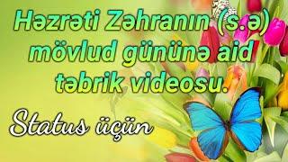 Təbrik videosu - Həzrəti Zəhranın (s.ə) mövlud günü üçün (status üçün)