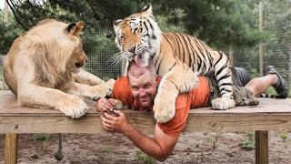 Big Cat Enthusiast Owns Six Tigers And Two Lions..
