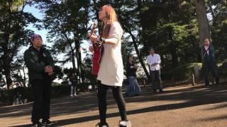 2016.11.5 大倉山公園.