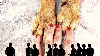 I am a dog rescuer