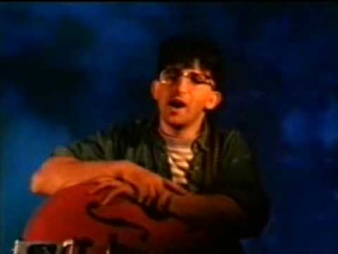 the lightning seeds-pure