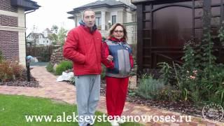 Укрытие гортензий с Алексеем Степановым