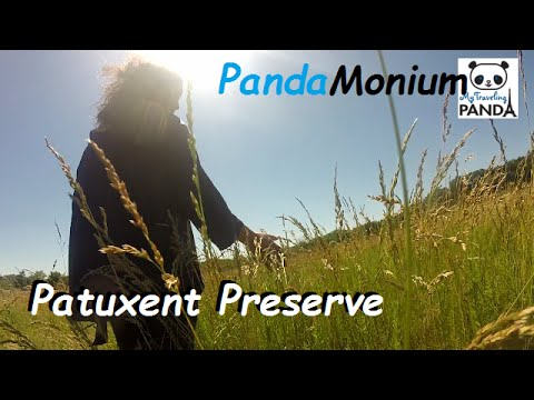Exploring Patuxent Wildlife Nature Preserve Maryland - RV Living Vlog