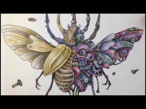 Colored By Julie Bouve Imagimorphia Inktense Pencils