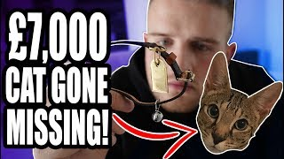 I LOST MY £7000 CAT! NOT A **PRANK**