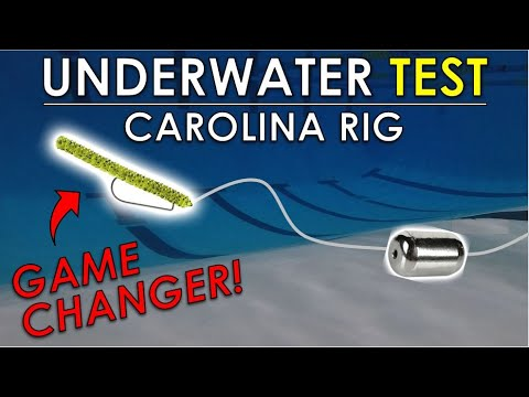 Best Baits And Leader Length For Carolina Rigs Offshore | Underwater Bass Fishing Lure Test