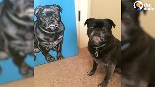 Artist Creates Super Realistic Portraits Of Cats And Dogs
