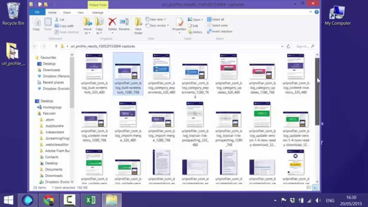 Bulk Screenshot Any Website or Webpage - URL Profiler