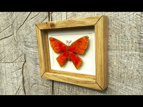 Carved Wood Moth & Oak Display Case.............. DSNERV