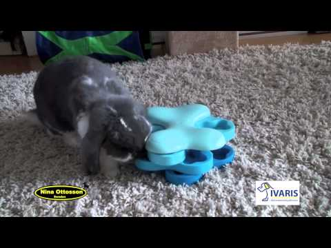 Dog Tornado (kunststof) – konijn