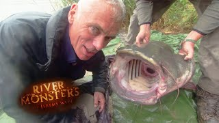 Catching An Even Bigger Wels Catfish - River Monsters thumbnail