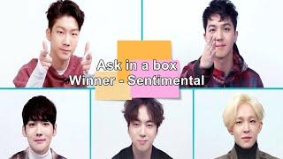 [Sub español] ASK IN A BOX WINNER SENTIMENTAL I Paradise Subs Español