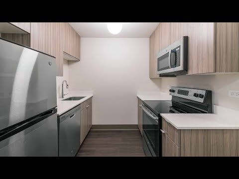 a-2-bedroom,-2-bath-model-at-the-south-loop's-new-820-south-michigan