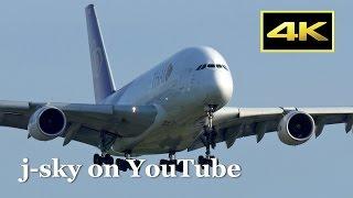 [4K] Thai Airways International Airbus A380 and more at Narita Airport / タイ国際航空 成田国際空港