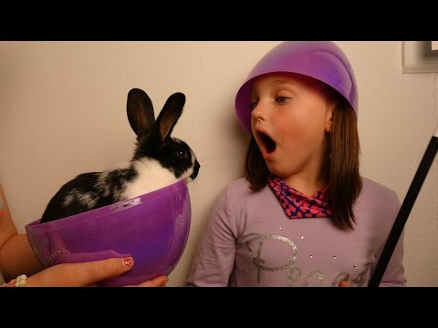 "Thumbnail: Giant Surprise Bunny Eggs ""Victoria & Annabelle Toy Freaks"""