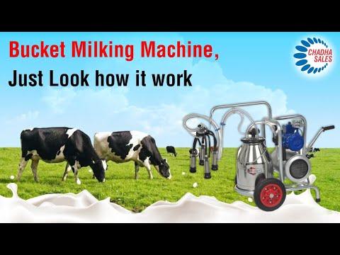 Bucket Milking Machine. How It Works