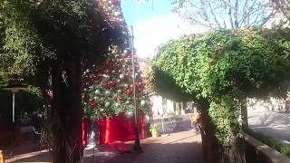 Рождество в Кремниевой Долине. Рождественский Сан-Хосе