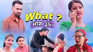 राजु मास्टरको WHAT Part 36 || 3  August || 2019 | Raju Master | Master TV