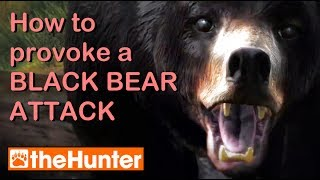 Provoking a Bear Attack - theHunter PC Game