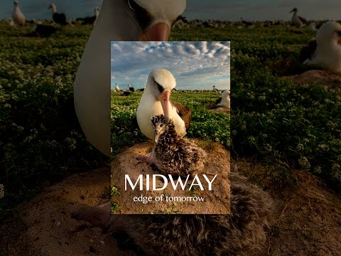 Midway: Edge of Tomorrow Mp3