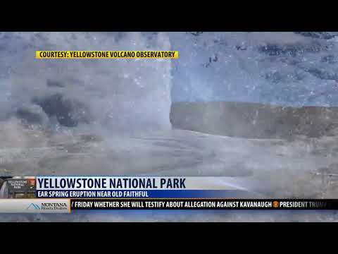 New thermal activity near Old Faithful in Yellowstone National Park