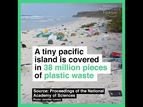A tiny pacific island is covered in 38 million pieces of plastic waste