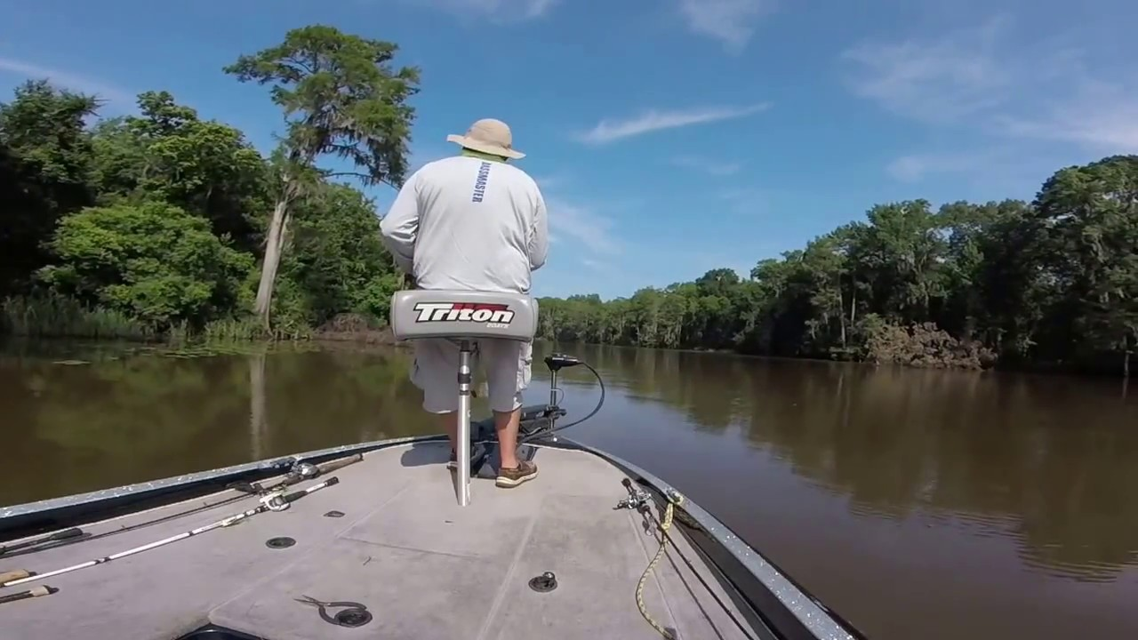 Caddo lake 27 june 2016 youtube for Caddo lake fishing report