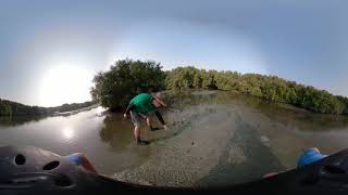 360 Walk Through Ras Al Khor Mangroves Part 1