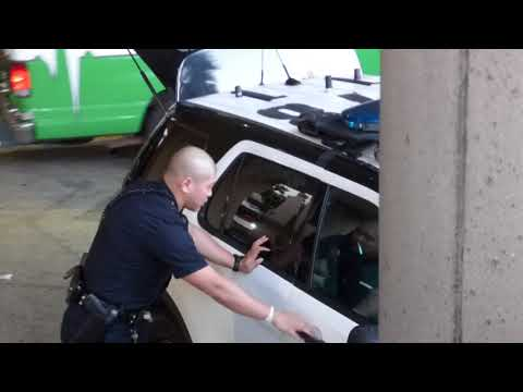 LAPD Arrest ( SCREAMING  WOMAN STUFFED IN CAR ) w/ JMR Utah concerned citizen news