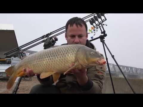 Pescuit pe Olt 12