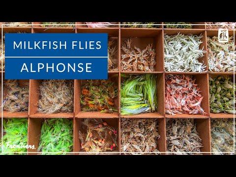 Milkfish Flies