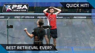 QuickHit: OUTRAGEOUS DIVE & WINNER - BEST RETRIEVAL EVER?
